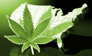 marihuana-na-mapie