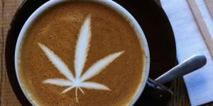 ba-nowy-trend-kawa-z-marihuana-sklep-zdrowie