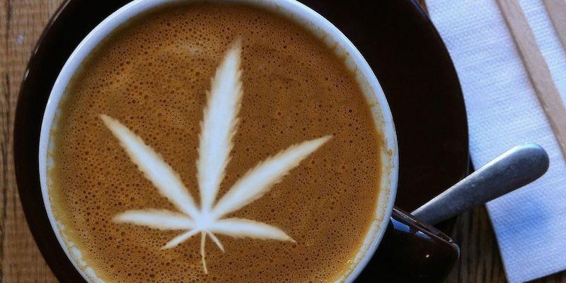 Nowy Trend w Seattle: Kawa z Marihuaną, KonopiaLeczy.com