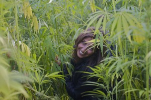 marihuana-lecznicza-medyczna-kobieta-uprawa-marihuany