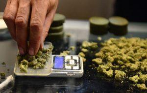 medyczna-marihuana-waga-zielona