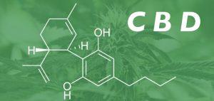 medycyna-marihuana-nasiona-marihuany-a-z-nich-medyczna-marihuana-cbd-thc-czasteczka-cbd