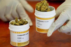 Sondaż pokazuje, że 80% mieszkańców Pensylwanii popiera medyczną marihuanę, KonopiaLeczy.com