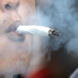 Płacą mu za testowanie medycznej marihuany, KonopiaLeczy.com