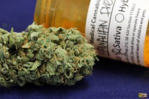 Porady jak rozmawiać z lekarzem na temat marihuany, KonopiaLeczy.com