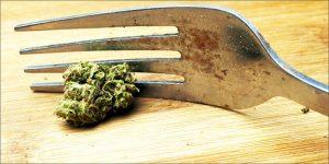 Zrozumiesz, jeśli lubisz jeść marihuanę, KonopiaLeczy.com