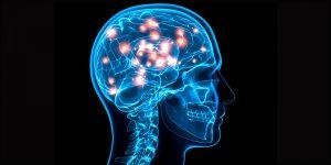 Działanie marihuany na mózg, KonopiaLeczy.com
