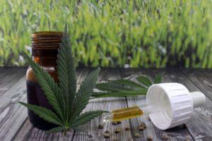 Opóźnienie medycznej marihuany w Ohio, KonopiaLeczy.com