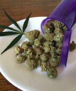 Marihuana w Kolorado, KonopiaLeczy.com