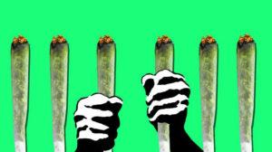 Wpływ legalizacji medycznej marihuany na świecie, KonopiaLeczy.com