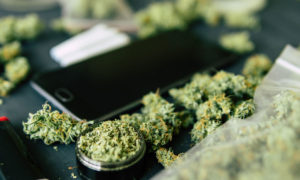 Rejestracja w programie medycznej marihuany, KonopiaLeczy.com