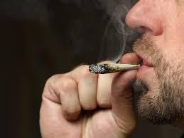 1 na 8 Amerykanów pali marihuanę, KonopiaLeczy.com