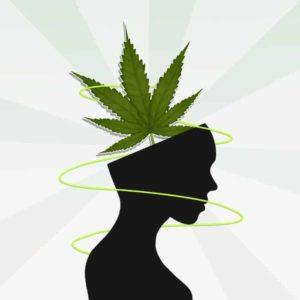 Działanie marihuany na sen, KonopiaLeczy.com