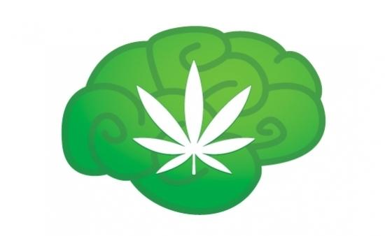 Czy marihuana może sprawić, że będziesz mądrzejszy?, KonopiaLeczy.com