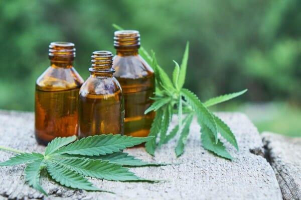 5 Najlepszych Odmian Marihuany Dla Diabetyków, KonopiaLeczy.com