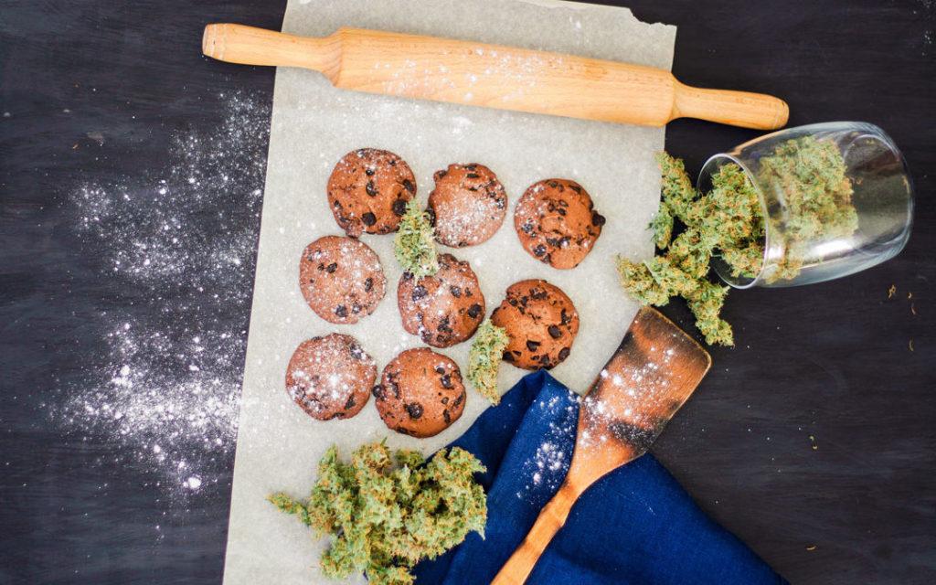 Najważniejsze powody stosowania marihuany w jaskrze, KonopiaLeczy.com