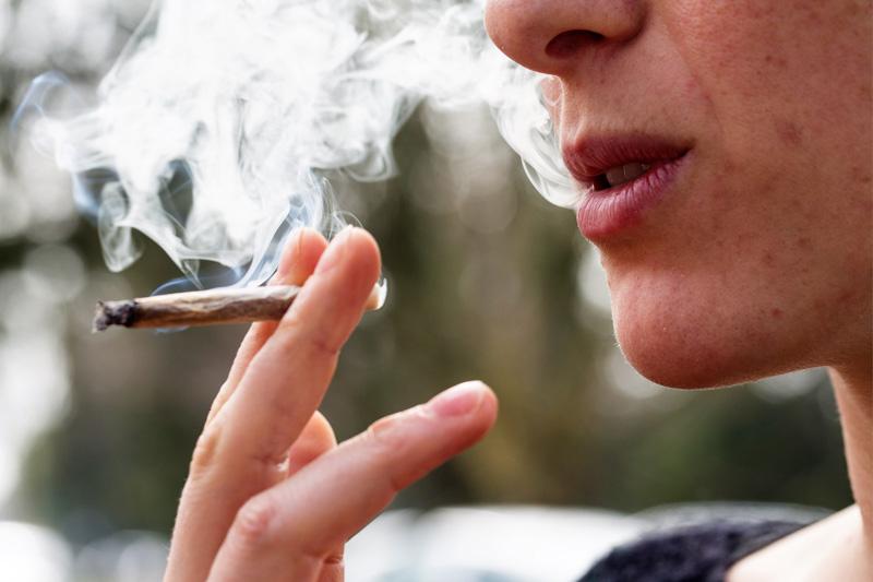 Dzielenie się Marihuaną Podczas Pandemii, KonopiaLeczy.com