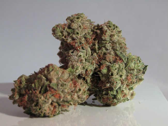 Marihuana w Leczeniu Udaru, KonopiaLeczy.com