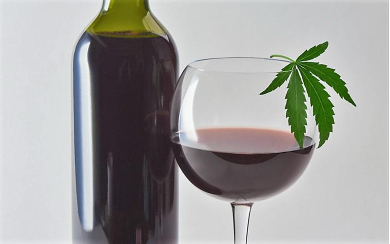 Marihuana Zastępuje Alkohol Podczas Pandemii, KonopiaLeczy.com