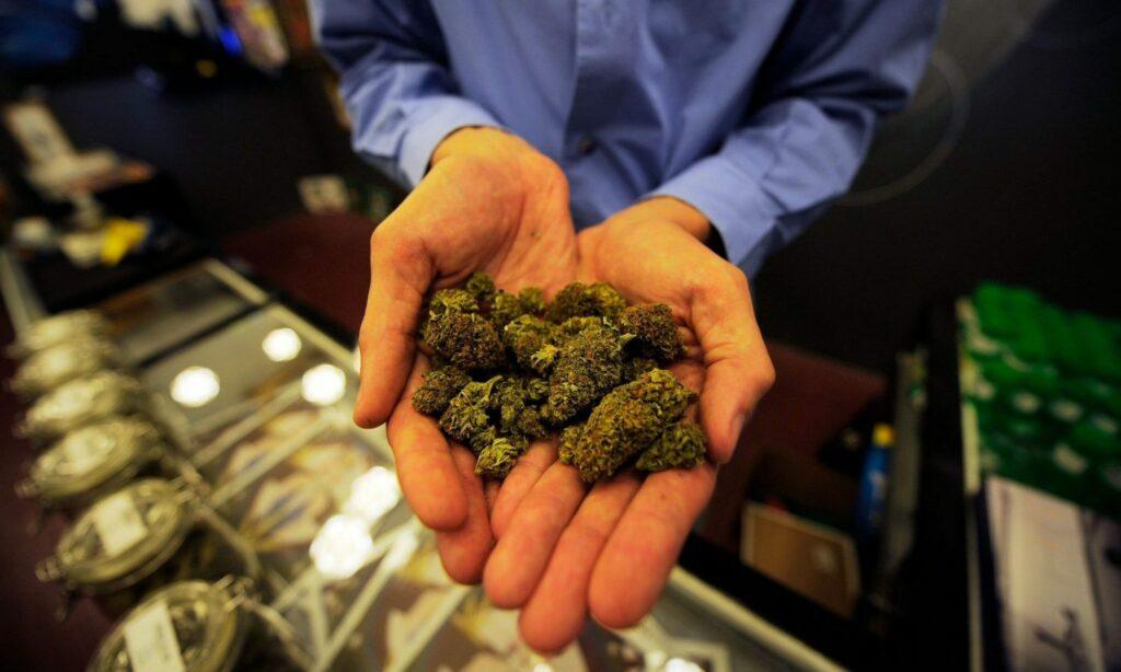 Palenie Marihuany Na Randce, KonopiaLeczy.com